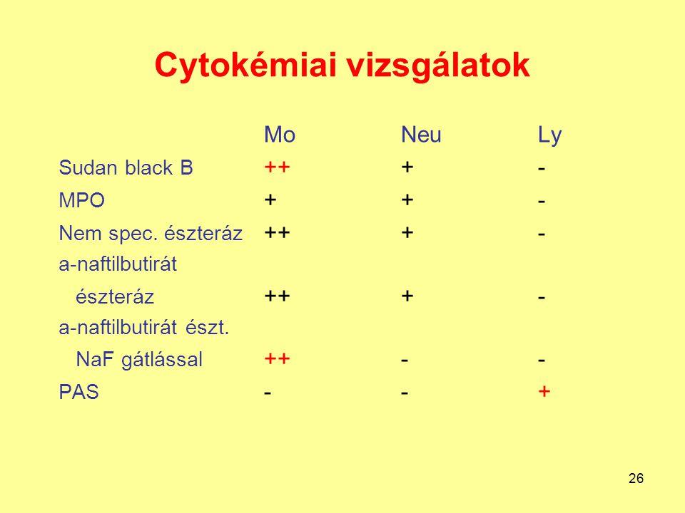 26 Cytokémiai vizsgálatok MoNeuLy Sudan black B +++- MPO ++- Nem spec. észteráz +++- a-naftilbutirát észteráz +++- a-naftilbutirát észt. NaF gátlással