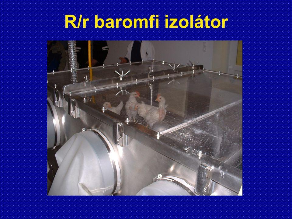 R/r baromfi izolátor