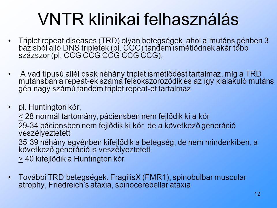 12 VNTR klinikai felhasználás Triplet repeat diseases (TRD) olyan betegségek, ahol a mutáns génben 3 bázisból álló DNS tripletek (pl. CCG) tandem ismé