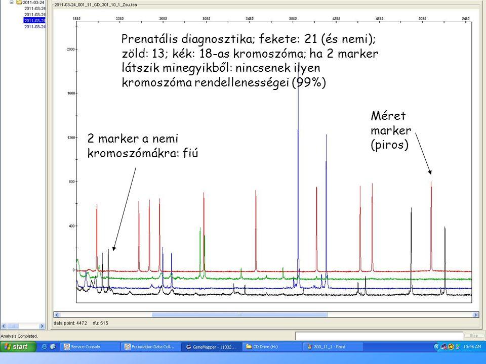 14 2 marker a nemi kromoszómákra: fiú Méret marker (piros) Prenatális diagnosztika; fekete: 21 (és nemi); zöld: 13; kék: 18-as kromoszóma; ha 2 marker