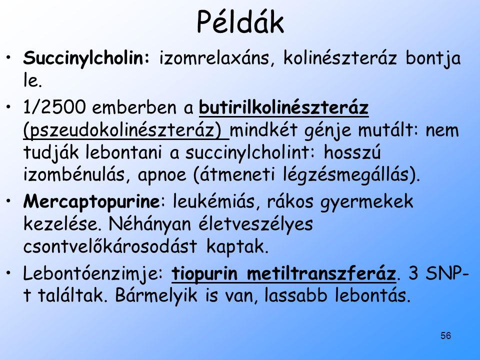 56 Példák Succinylcholin: izomrelaxáns, kolinészteráz bontja le. 1/2500 emberben a butirilkolinészteráz (pszeudokolinészteráz) mindkét génje mutált: n