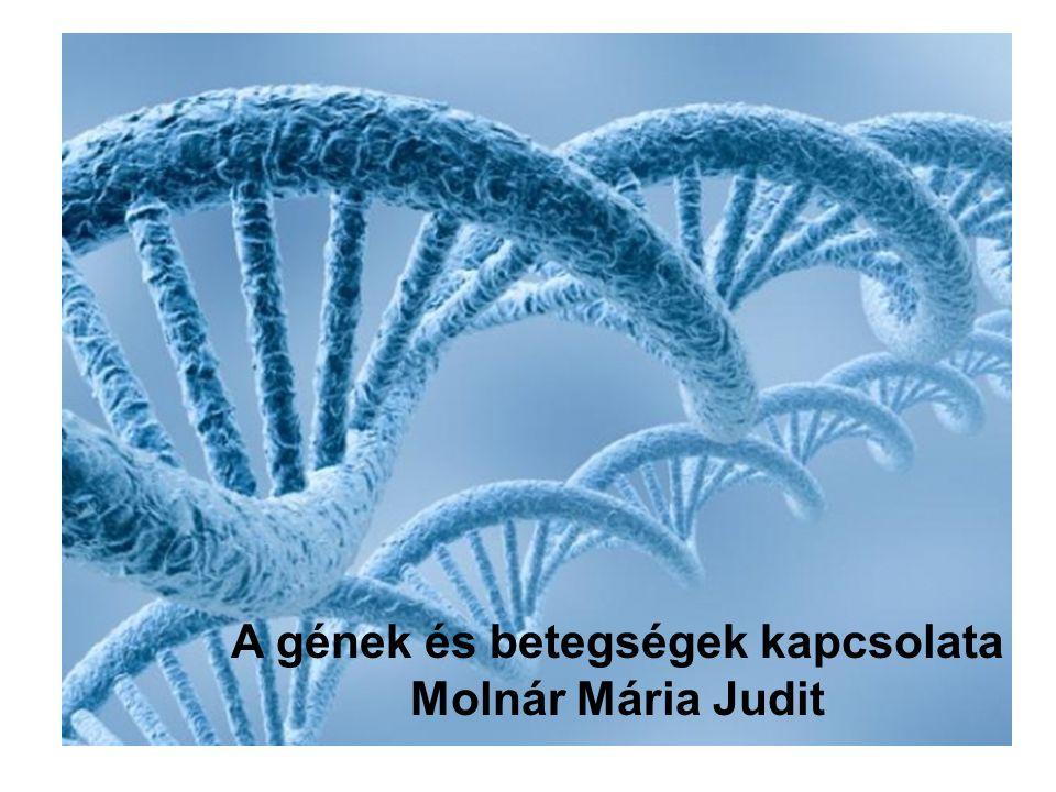 Molnár Mária Judit A gének és betegségek kapcsolata Molnár Mária Judit