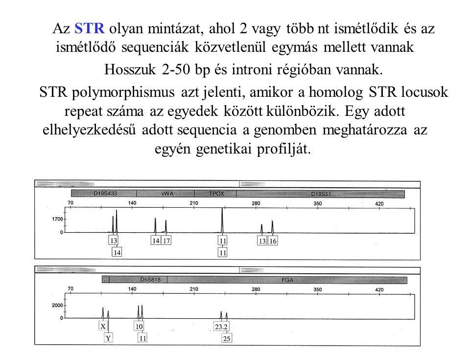Az STR olyan mintázat, ahol 2 vagy több nt ismétlődik és az ismétlődő sequenciák közvetlenül egymás mellett vannak Hosszuk 2-50 bp és introni régióban