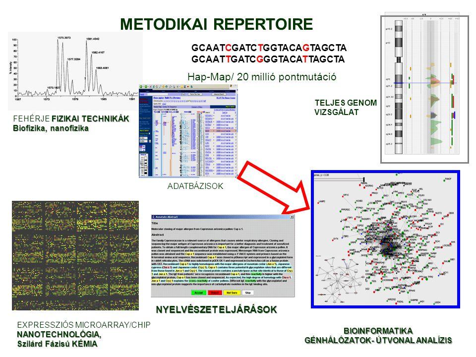 GCAATCGATCTGGTACAGTAGCTA GCAATTGATCGGGTACATTAGCTA Hap-Map/ 20 millió pontmutáció EXPRESSZIÓS MICROARRAY/CHIPNANOTECHNOLÓGIA, Szilárd Fázisú KÉMIA FIZI
