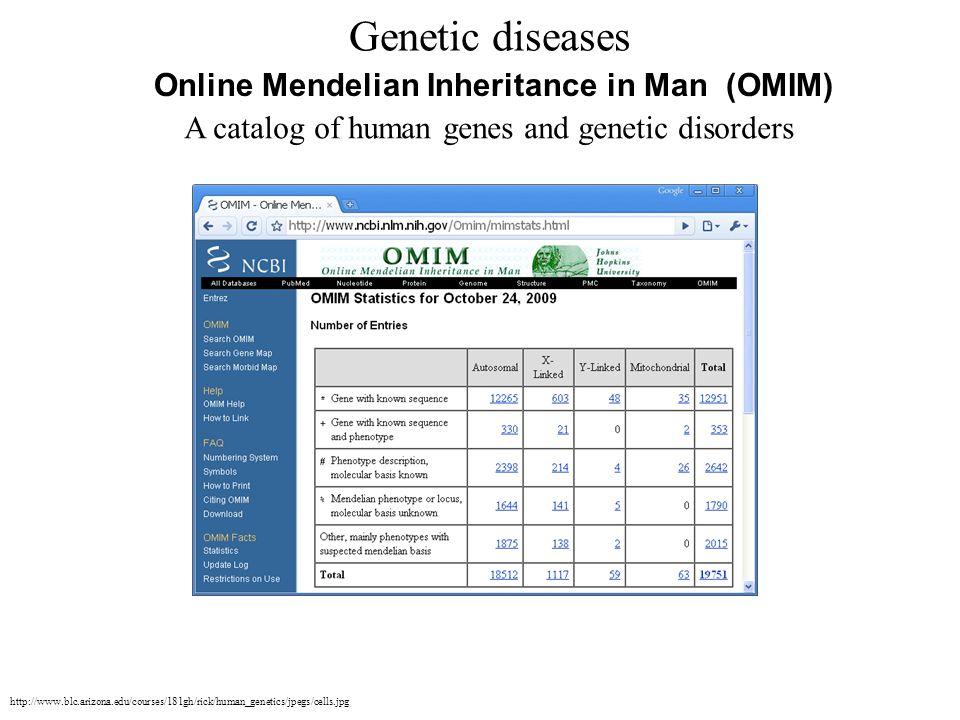 Online Mendelian Inheritance in Man (OMIM) A catalog of human genes and genetic disorders Genetic diseases http://www.blc.arizona.edu/courses/181gh/ri