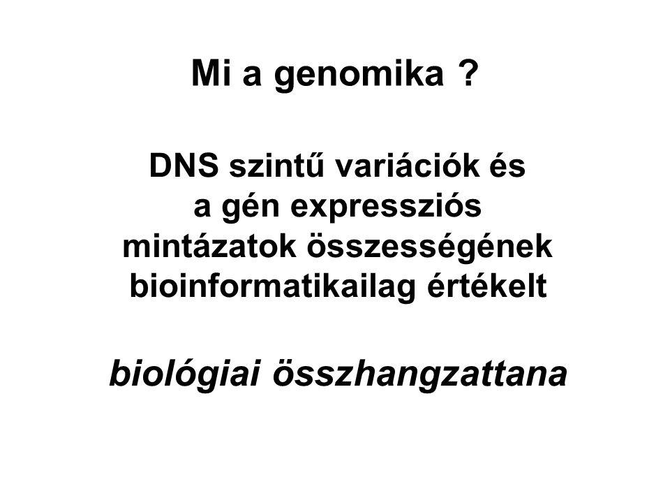 Mi a genomika ? DNS szintű variációk és a gén expressziós mintázatok összességének bioinformatikailag értékelt biológiai összhangzattana