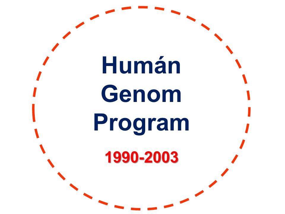 Humán Genom Program1990-2003