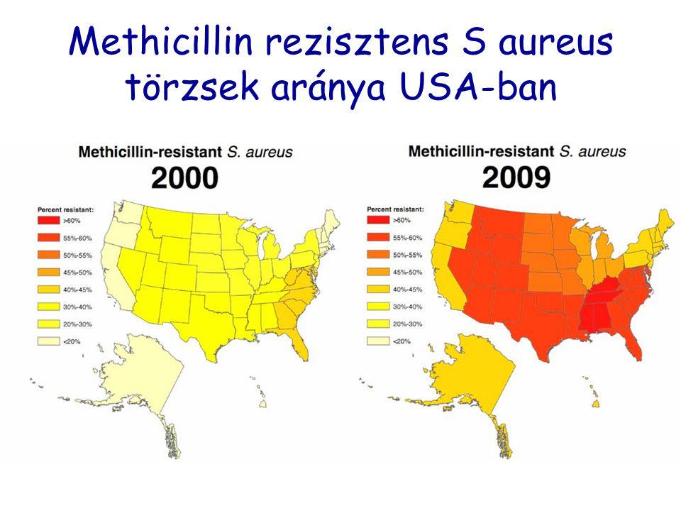Methicillin rezisztens S aureus törzsek aránya USA-ban