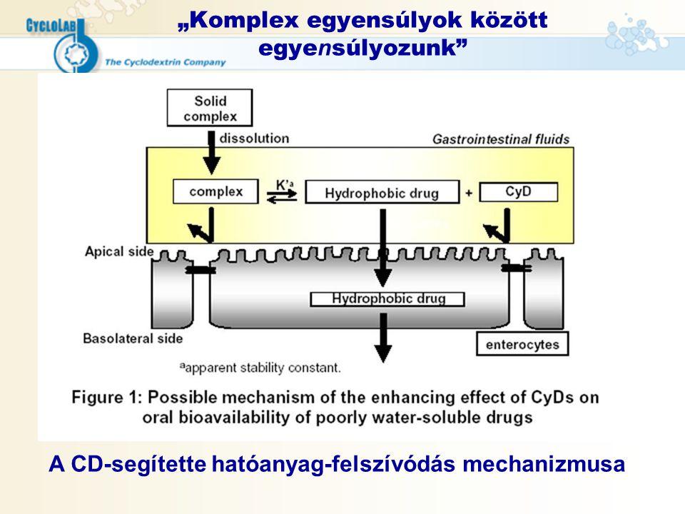 """""""Komplex egyensúlyok között egye n súlyozunk"""" A CD-segítette hatóanyag-felszívódás mechanizmusa"""