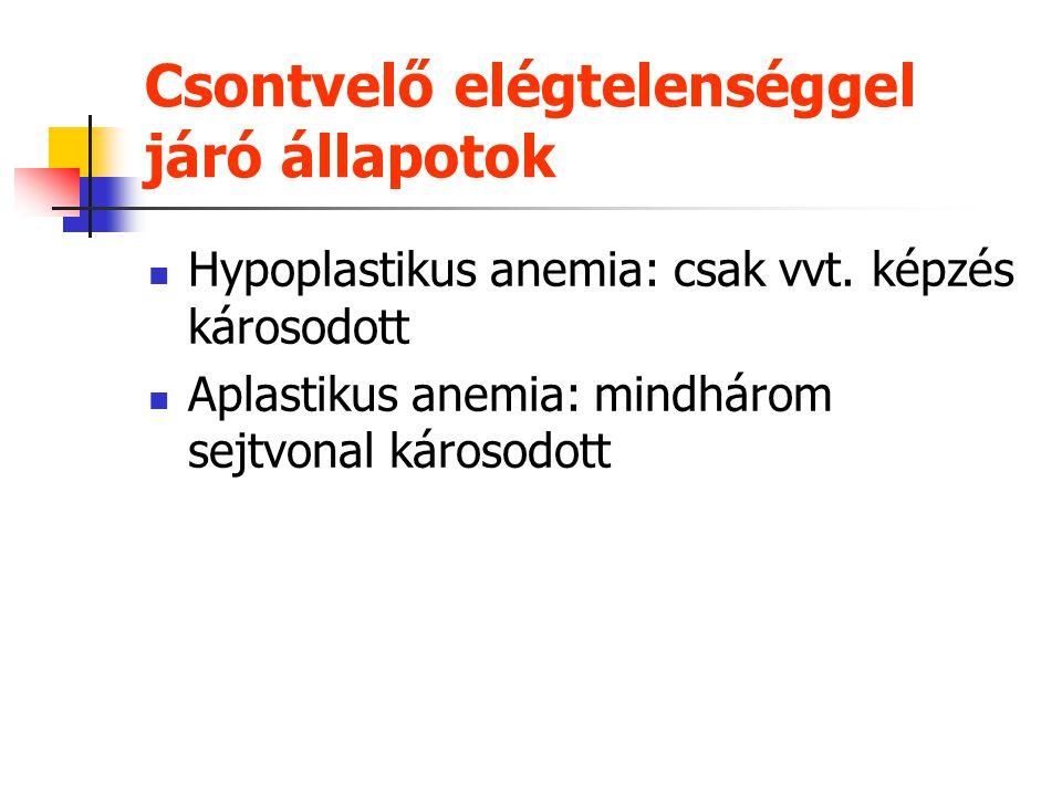 Macrocytás anemiák vérkép és csontvelőMegaloblastos Nem-megaloblasztos B 12 hiány nincs hiány fólsavhiány Klinikum és szerum vitaminszint Anemia pern.