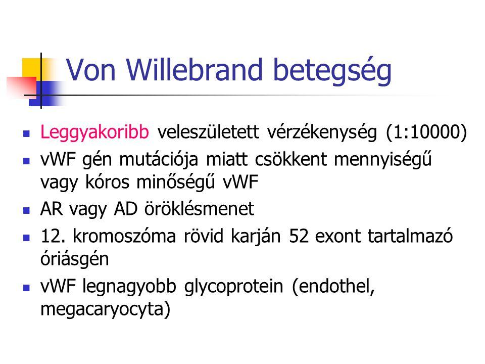 1-típus (60-80%): a vWF mennyisége csökkent (de valamennyi multimer jelen van) 2-típus (15-30%): a vWF minősége károsodott 3-típus (1-5%): a vWF telje