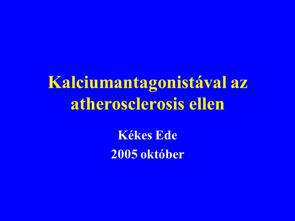 Kalciumantagonistával az atherosclerosis ellen Kékes Ede 2005 október