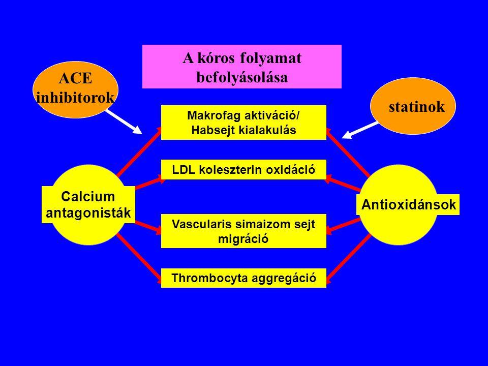 Makrofag aktiváció/ Habsejt kialakulás LDL koleszterin oxidáció Vascularis simaizom sejt migráció Thrombocyta aggregáció Calcium antagonisták Antioxid