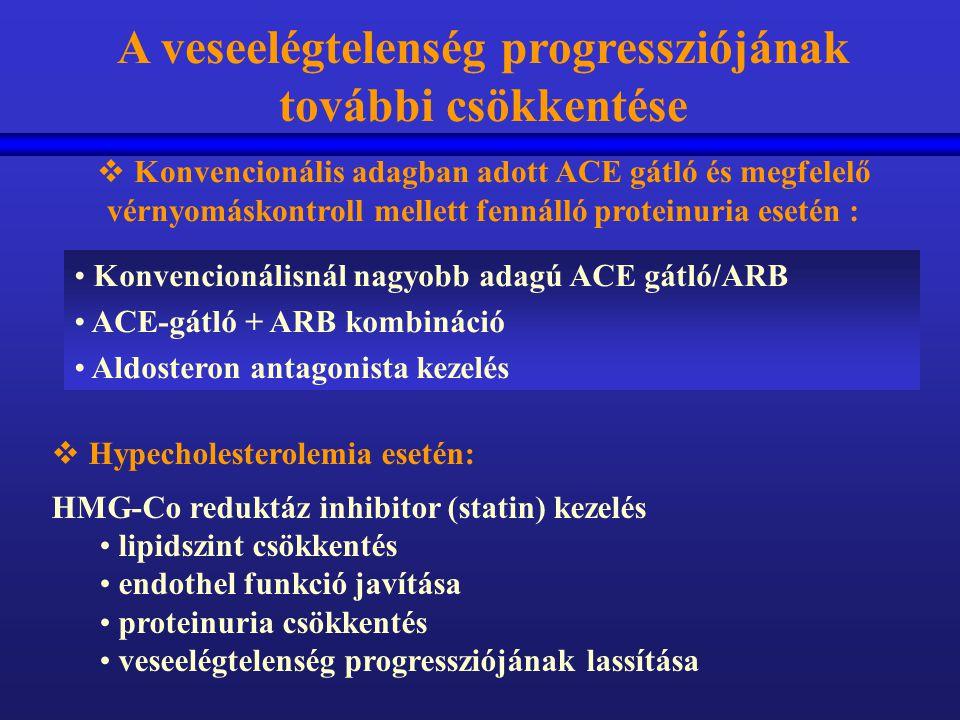 Konvencionálisnál nagyobb adagú ACE gátló/ARB ACE-gátló + ARB kombináció Aldosteron antagonista kezelés A veseelégtelenség progressziójának további cs