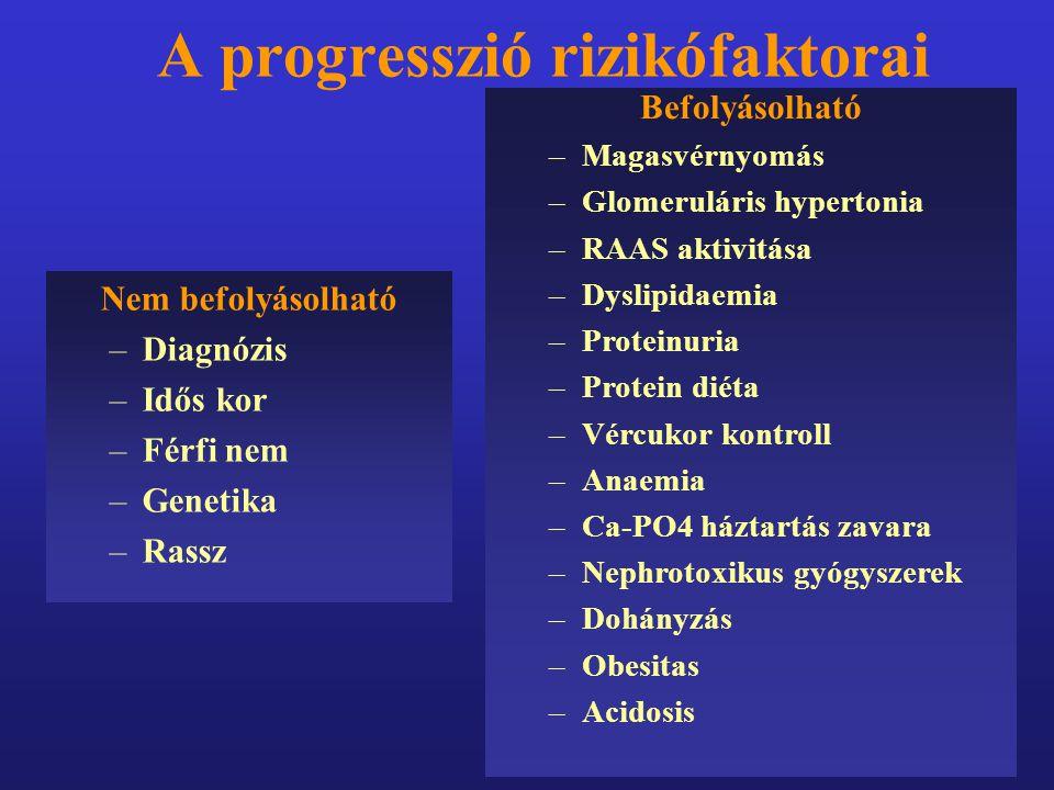 A progresszió rizikófaktorai Nem befolyásolható –Diagnózis –Idős kor –Férfi nem –Genetika –Rassz Befolyásolható –Magasvérnyomás –Glomeruláris hyperton