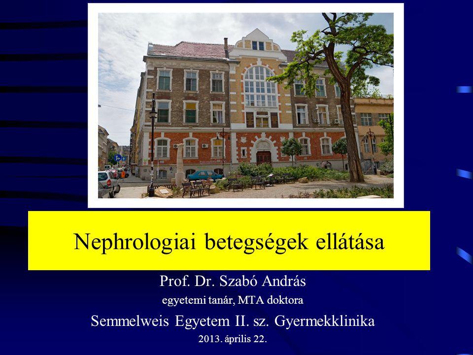 Nephrologiai betegségek ellátása Prof. Dr. Szabó András egyetemi tanár, MTA doktora Semmelweis Egyetem II. sz. Gyermekklinika 2013. április 22.