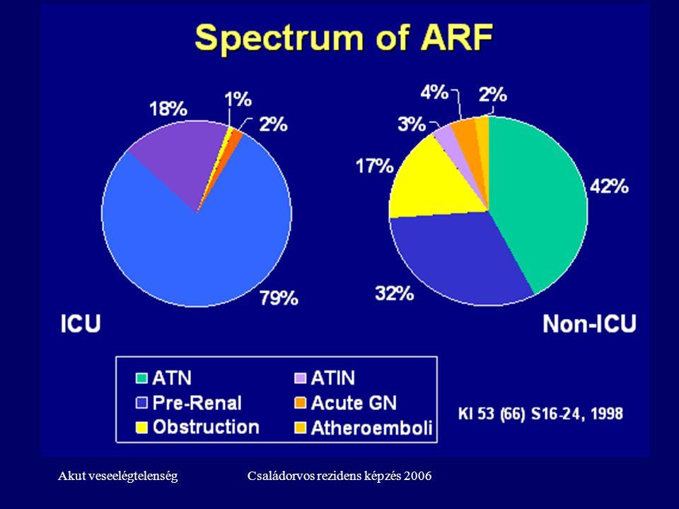 Akut veseelégtelenségCsaládorvos rezidens képzés 2006 Az AVE rizikótényezői -1 Életkor Diabetes Fennálló veseelégtelenség Szívelégtelenség ACEI, ARB szedés