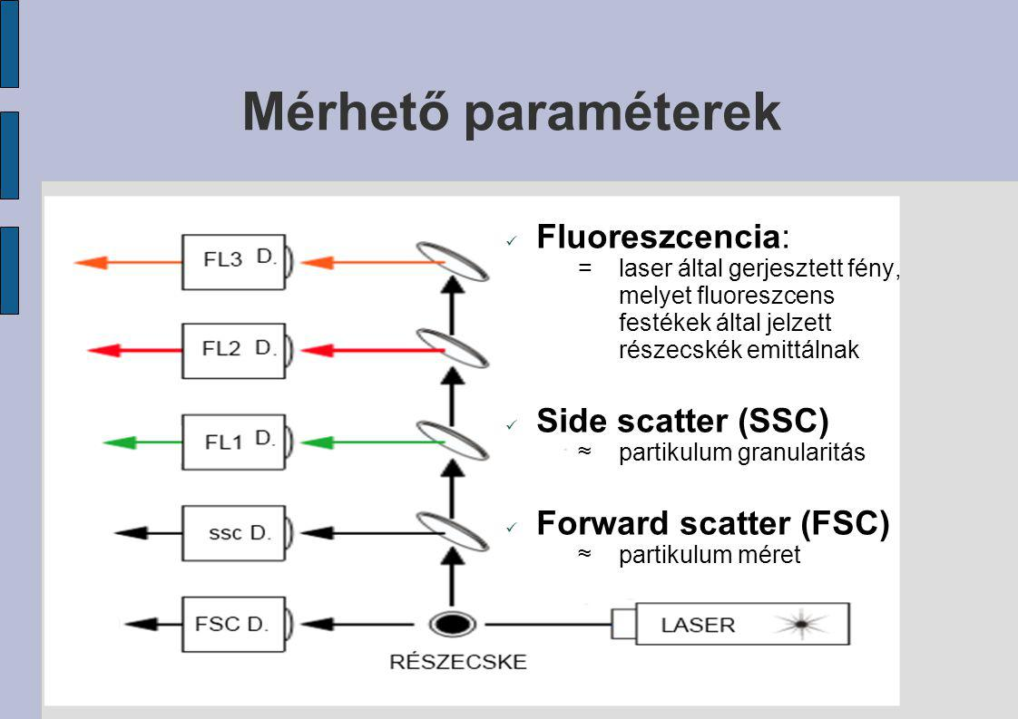 Mérhető paraméterek Fluoreszcencia: =laser által gerjesztett fény, melyet fluoreszcens festékek által jelzett részecskék emittálnak Side scatter (SSC)
