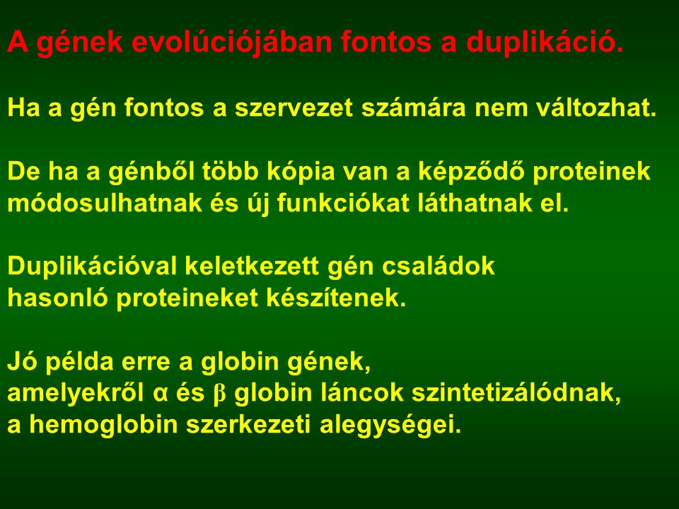 A gének evolúciójában fontos a duplikáció. Ha a gén fontos a szervezet számára nem változhat. De ha a génből több kópia van a képződő proteinek módosu