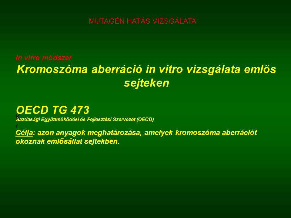 In vitro módszer Kromoszóma aberráció in vitro vizsgálata emlős sejteken OECD TG 473 Gazdasági Együttműködési és Fejlesztési Szervezet (OECD) Célja: a