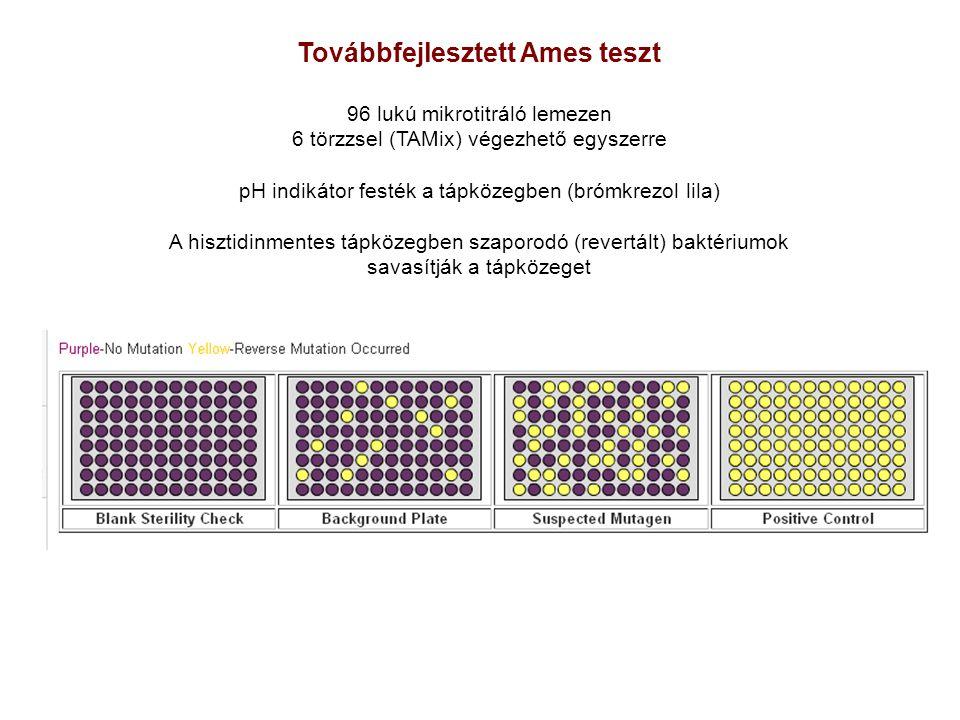 Továbbfejlesztett Ames teszt 96 lukú mikrotitráló lemezen 6 törzzsel (TAMix) végezhető egyszerre pH indikátor festék a tápközegben (brómkrezol lila) A hisztidinmentes tápközegben szaporodó (revertált) baktériumok savasítják a tápközeget