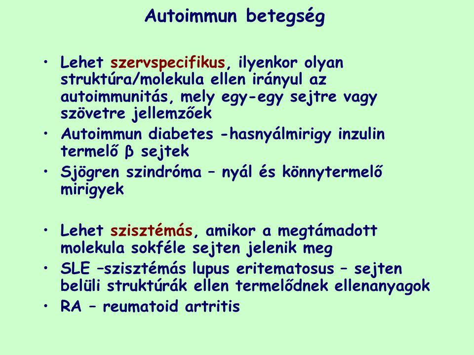 Autoimmun betegség Lehet szervspecifikus, ilyenkor olyan struktúra/molekula ellen irányul az autoimmunitás, mely egy-egy sejtre vagy szövetre jellemző