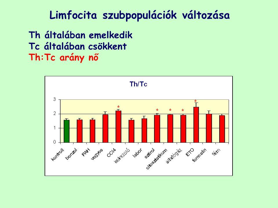 Limfocita szubpopulációk változása Th általában emelkedik Tc általában csökkent Th:Tc arány nő