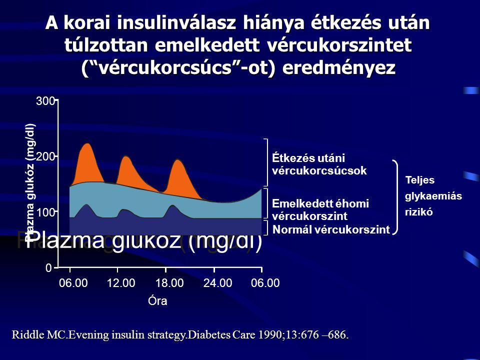 """A korai insulinválasz hiánya étkezés után túlzottan emelkedett vércukorszintet (""""vércukorcsúcs""""-ot) eredményez Plazma glukóz (mg/dl) 300 200 100 0 06."""
