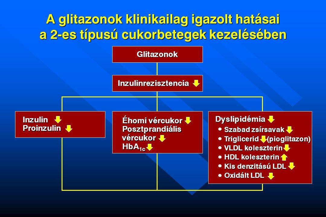 A glitazonok klinikailag igazolt hatásai a 2-es típusú cukorbetegek kezelésében Glitazonok Inzulinrezisztencia Éhomi vércukor Posztprandiális vércukor