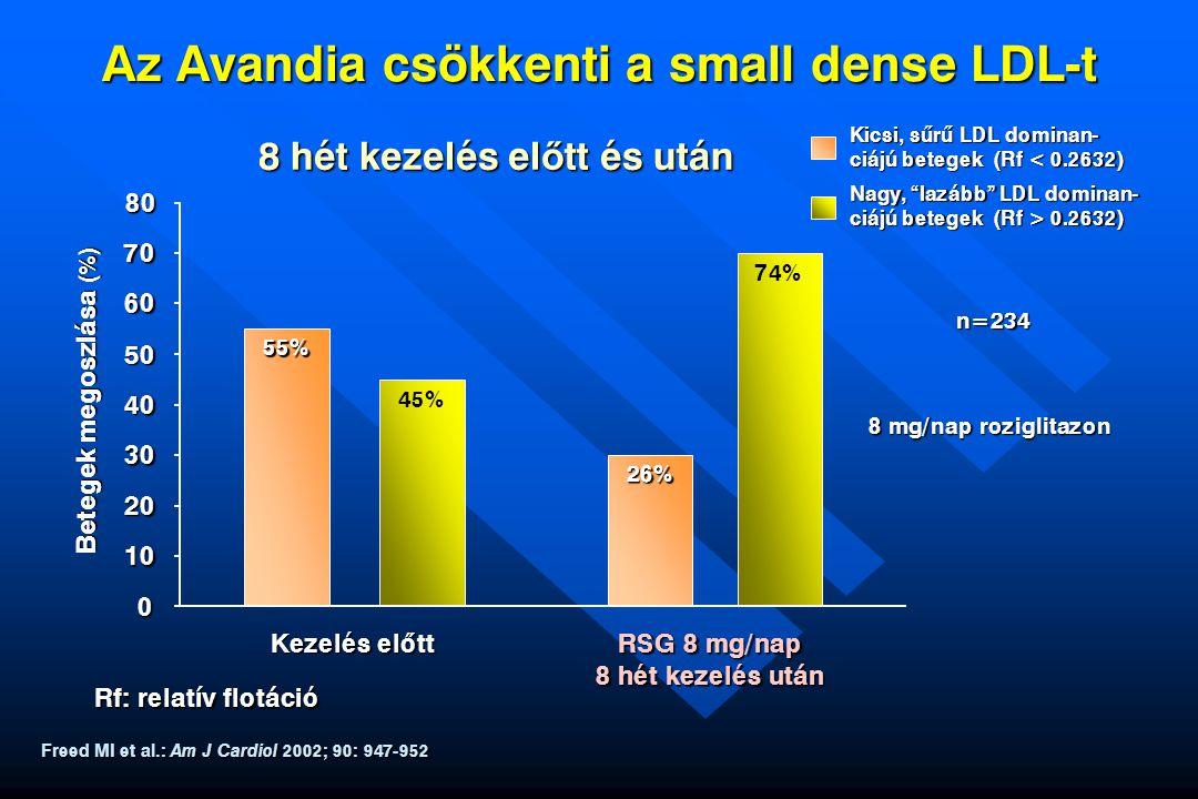 """RSG 8 mg/nap 8 hét kezelés után Kicsi, sûrû LDL dominan- ciájú betegek (Rf < 0.2632) Nagy, """"lazább"""" LDL dominan- ciájú betegek (Rf > 0.2632) n=234 Fre"""