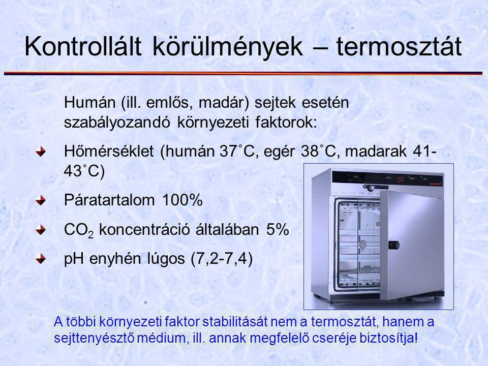 Kontrollált körülmények – termosztát Humán (ill. emlős, madár) sejtek esetén szabályozandó környezeti faktorok: Hőmérséklet (humán 37˚C, egér 38˚C, ma