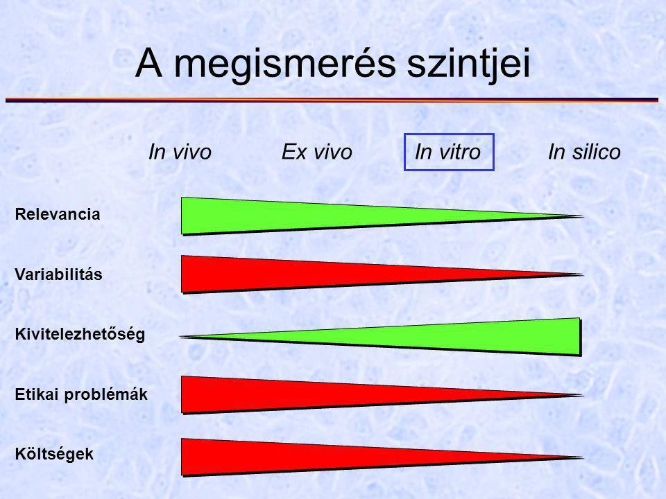 A megismerés szintjei In vivoEx vivoIn vitroIn silico Relevancia Variabilitás Kivitelezhetőség Etikai problémák Költségek