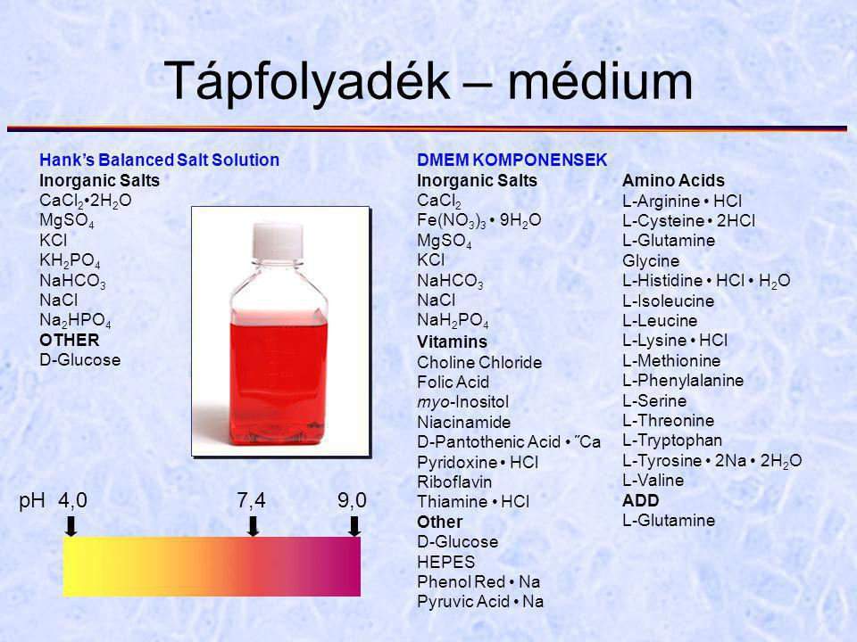 Tápfolyadék – médium DMEM KOMPONENSEK Inorganic Salts CaCl 2 Fe(NO 3 ) 3 9H 2 O MgSO 4 KCl NaHCO 3 NaCl NaH 2 PO 4 Amino Acids L-Arginine HCl L-Cysteine 2HCl L-Glutamine Glycine L-Histidine HCl H 2 O L-Isoleucine L-Leucine L-Lysine HCl L-Methionine L-Phenylalanine L-Serine L-Threonine L-Tryptophan L-Tyrosine 2Na 2H 2 O L-Valine ADD L-Glutamine Vitamins Choline Chloride Folic Acid myo-Inositol Niacinamide D-Pantothenic Acid ˝Ca Pyridoxine HCl Riboflavin Thiamine HCl Other D-Glucose HEPES Phenol Red Na Pyruvic Acid Na Hank's Balanced Salt Solution Inorganic Salts CaCl 2 2H 2 O MgSO 4 KCl KH 2 PO 4 NaHCO 3 NaCl Na 2 HPO 4 OTHER D-Glucose pH 4,0 7,4 9,0