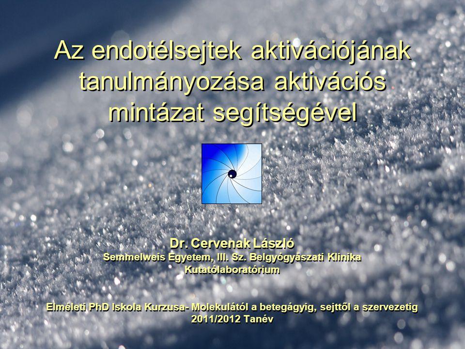 Az endotélsejtek aktivációjának tanulmányozása aktivációs mintázat segítségével Dr. Cervenak László Semmelweis Egyetem, III. Sz. Belgyógyászati Klinik