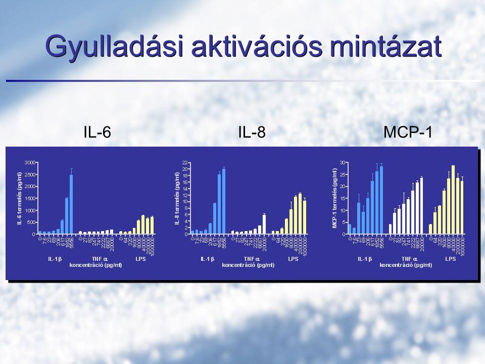 Gyulladási aktivációs mintázat IL-6 IL-8 MCP-1