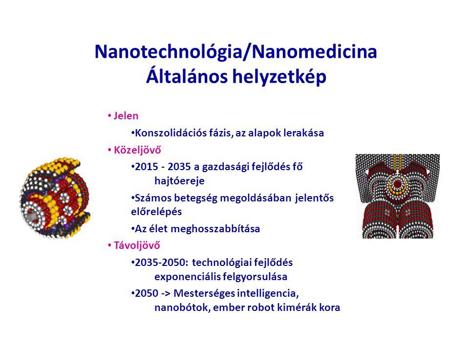 Nanotechnológia/Nanomedicina Általános helyzetkép Jelen Konszolidációs fázis, az alapok lerakása Közeljövő 2015 - 2035 a gazdasági fejlődés fő hajtóer