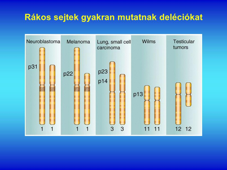 Rákos sejtek gyakran mutatnak deléciókat