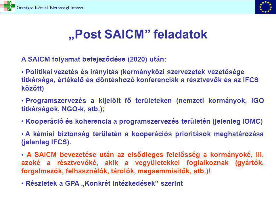 """""""Post SAICM"""" feladatok A SAICM folyamat befejeződése (2020) után: Politikai vezetés és irányítás (kormányközi szervezetek vezetősége titkársága, érték"""