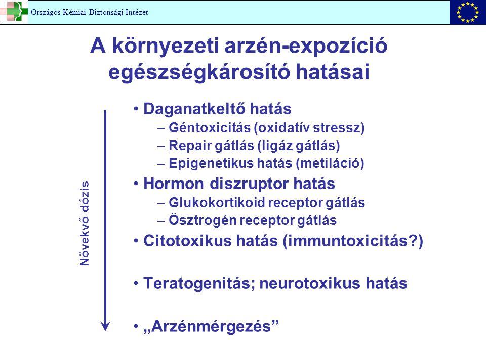A környezeti arzén-expozíció egészségkárosító hatásai Daganatkeltő hatás – Géntoxicitás (oxidatív stressz) – Repair gátlás (ligáz gátlás) – Epigenetik