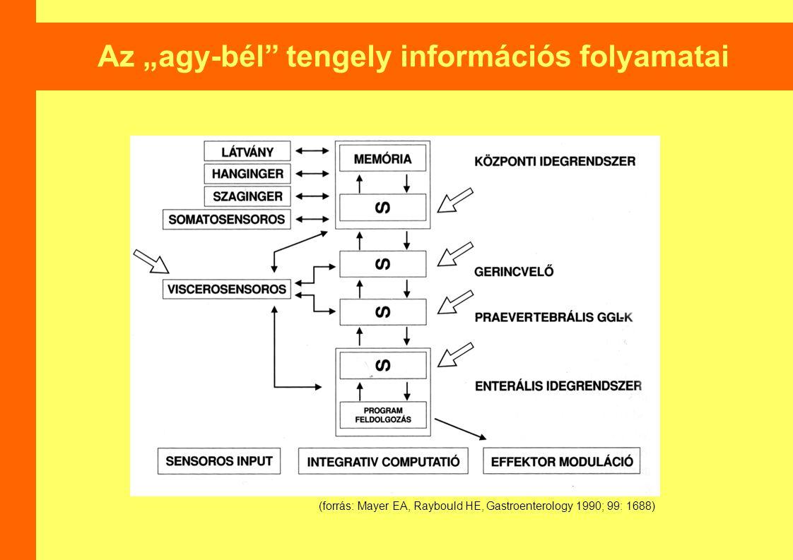 """Az """"agy-bél tengely információs folyamatai (forrás: Mayer EA, Raybould HE, Gastroenterology 1990; 99: 1688)"""