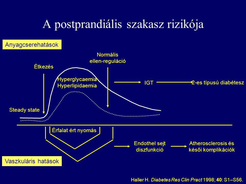 A postprandiális szakasz rizikója Étkezés Normális ellen-reguláció Érfalat ért nyomás IGT 2-es típusú diabétesz Steady state Hyperglycaemia Hyperlipidaemia Anyagcserehatások Vaszkuláris hatások Endothel sejt diszfunkció Atherosclerosis és késői komplikációk Haller H.