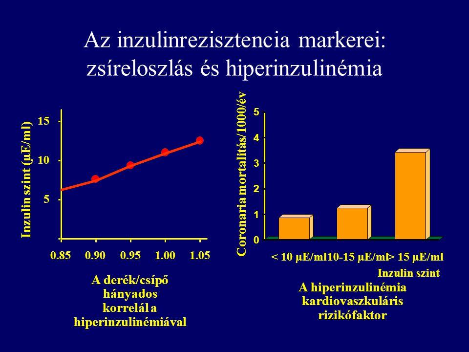 Az inzulinrezisztencia markerei: zsíreloszlás és hiperinzulinémia 0.850.900.951.001.05 5 10 15 Inzulin szint (µE/ml) A derék/csípő hányados korrelál a hiperinzulinémiával 0 1 2 3 4 5 < 10 µE/ml10-15 µE/ml> 15 µE/ml Coronaria mortalitás/1000/év Inzulin szint A hiperinzulinémia kardiovaszkuláris rizikófaktor