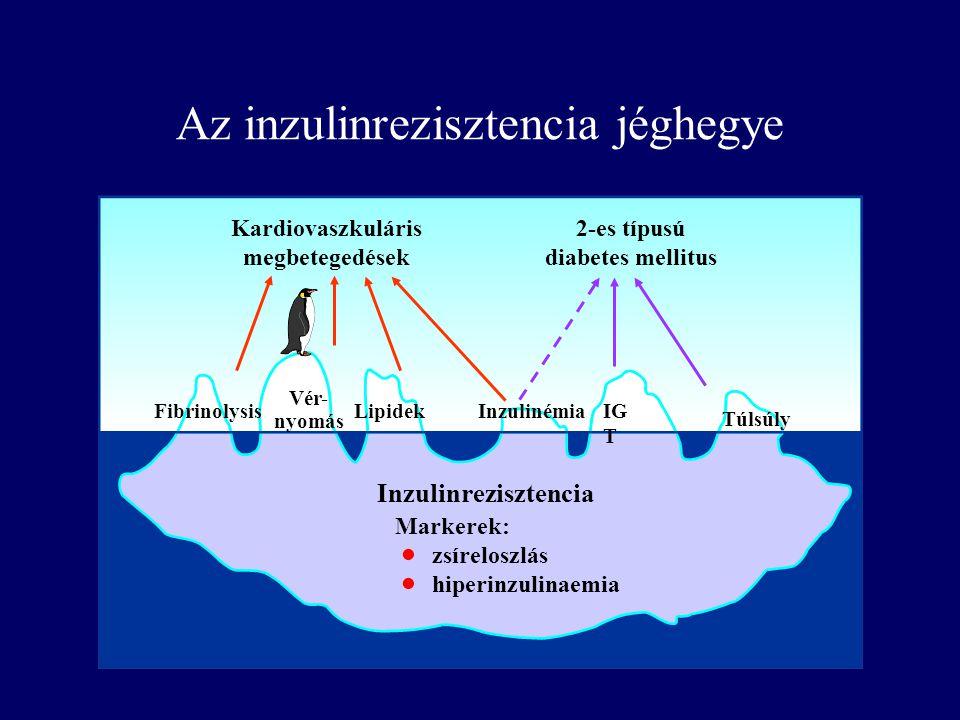 Az inzulinrezisztencia jéghegye Inzulinrezisztencia Markerek: zsíreloszlás hiperinzulinaemia Fibrinolysis Vér- nyomás LipidekInzulinémiaIG T Túlsúly K