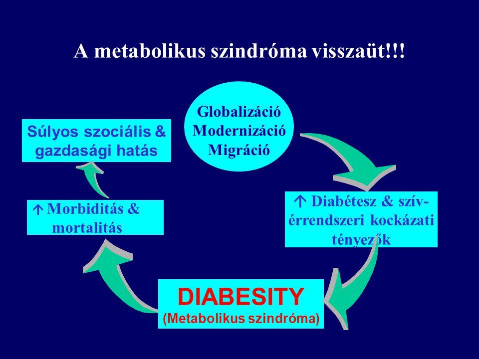  Diabétesz & szív- érrendszeri kockázati tényezők  Morbiditás & mortalitás Globalizáció Modernizáció Migráció DIABESITY (Metabolikus szindróma) Súlyos szociális & gazdasági hatás A metabolikus szindróma visszaüt!!!