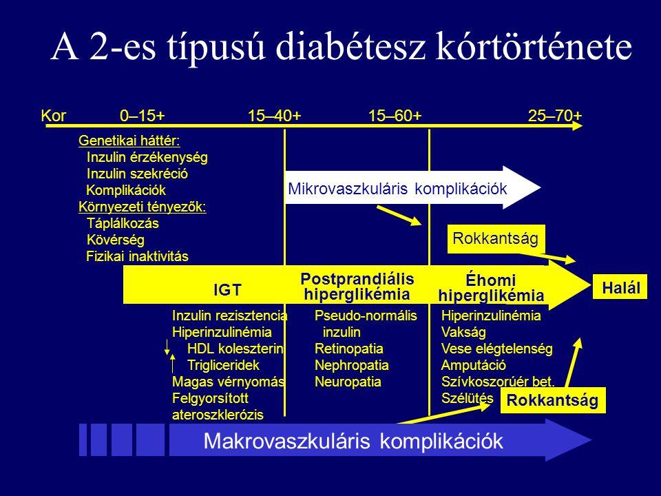 A 2-es típusú diabétesz kórtörténete Makrovaszkuláris komplikációk Kor0–15+15–40+15–60+25–70+ Halál IGT Mikrovaszkuláris komplikációk Postprandiális hiperglikémia Éhomi hiperglikémia Rokkantság Genetikai háttér: Inzulin érzékenység Inzulin szekréció Komplikációk Környezeti tényezők: Táplálkozás Kövérség Fizikai inaktivitás Inzulin rezisztencia Hiperinzulinémia HDL koleszterin Trigliceridek Magas vérnyomás Felgyorsított ateroszklerózis Pseudo-normális inzulin Retinopatia Nephropatia Neuropatia Hiperinzulinémia Vakság Vese elégtelenség Amputáció Szívkoszorúér bet.