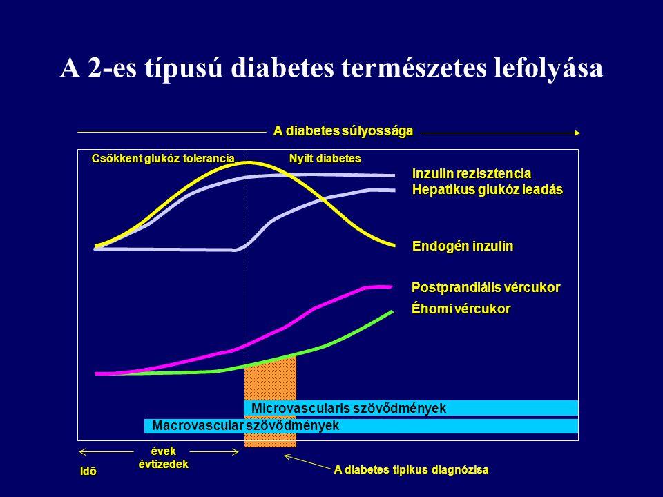 A 2-es típusú diabetes természetes lefolyása Inzulin rezisztencia Hepatikus glukóz leadás Endogén inzulin Postprandiális vércukor Éhomi vércukor A dia
