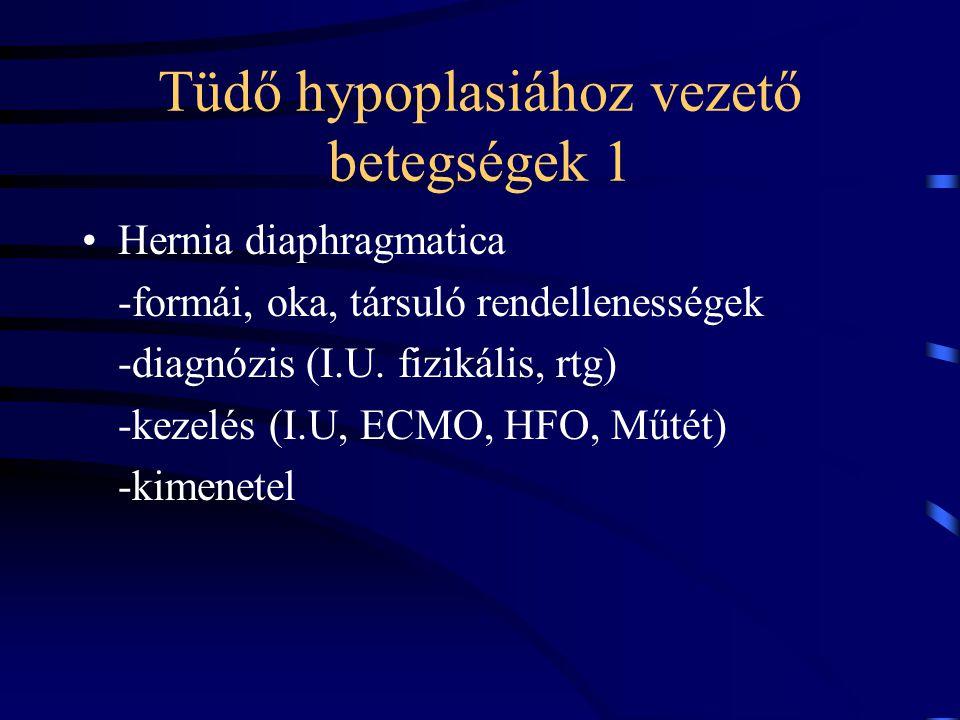 Tüdő hypoplasiához vezető betegségek 1 Hernia diaphragmatica -formái, oka, társuló rendellenességek -diagnózis (I.U. fizikális, rtg) -kezelés (I.U, EC