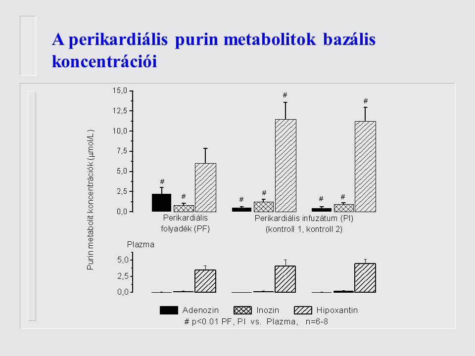 A perikardiális purin metabolitok bazális koncentrációi