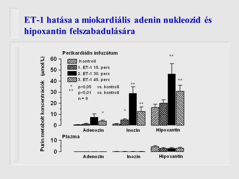 ET-1 hatása a miokardiális adenin nukleozid és hipoxantin felszabadulására