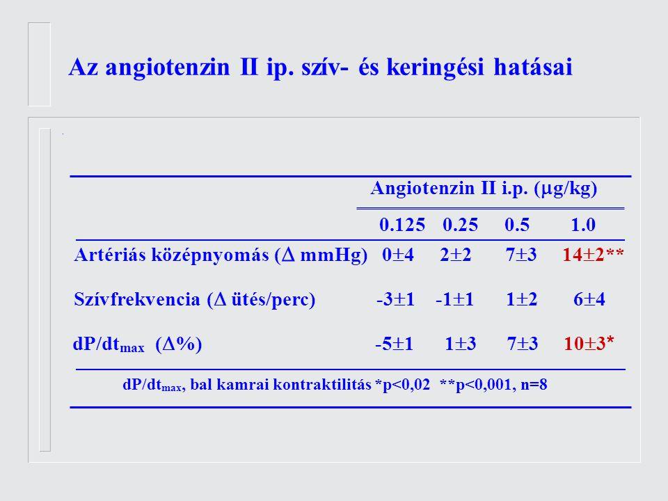 Az angiotenzin II ip. szív- és keringési hatásai.